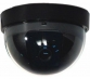 dome camera with audio